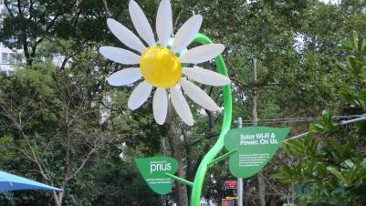 Toyota Prius Solar Flowers ManhattanVirtualOffice