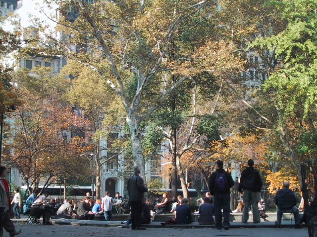 Madison Square Park in the Fall
