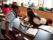Ms S Class 3